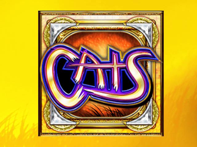 Игровой аппарат Cats – любимые коты станут символом удачи для игроков